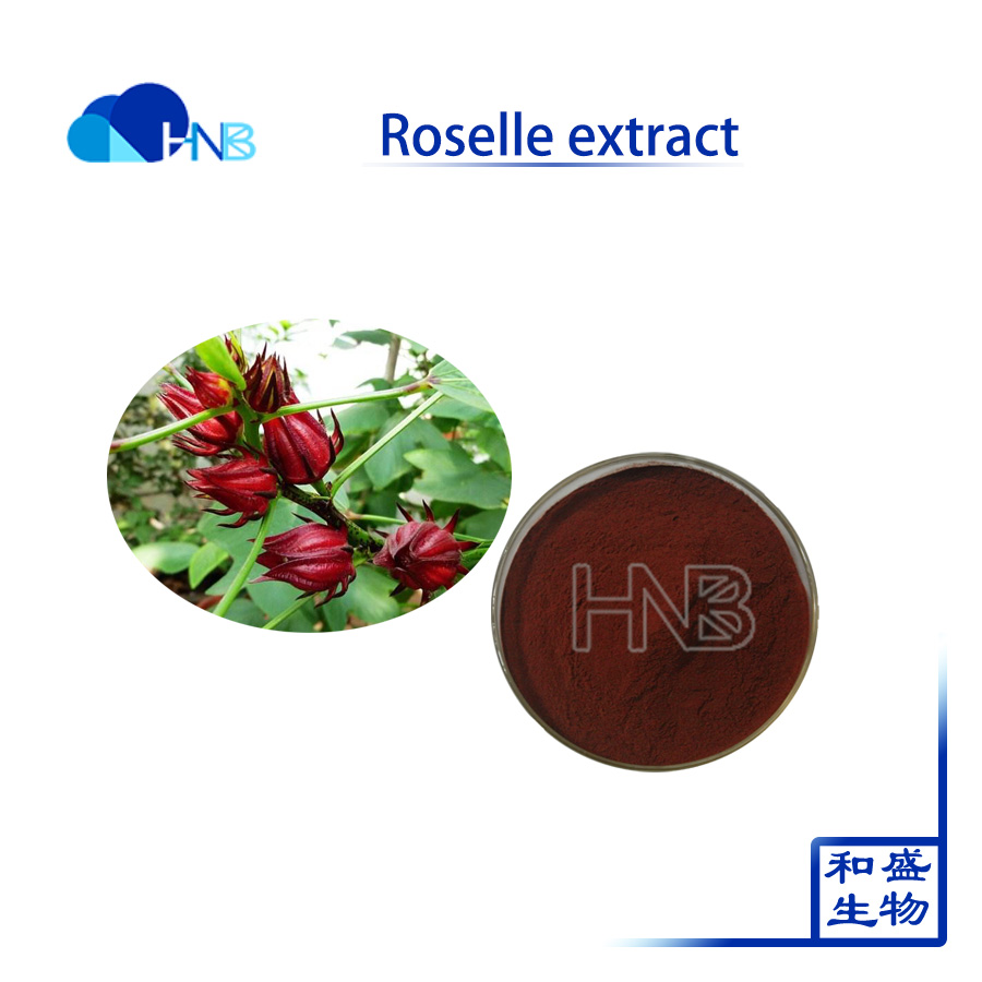 Hibiscus Flower Liquid Extract Hibiscus Flower Liquid Extract