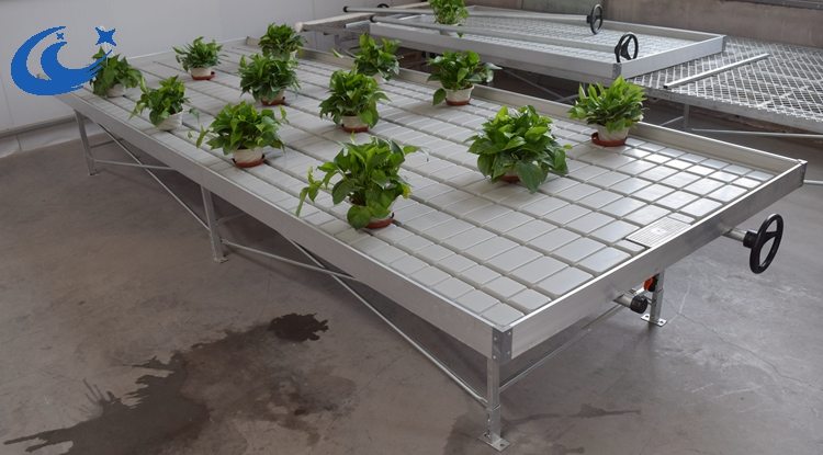 Propagation Bench Part - 33: Agricultural Ebb Flow Tray, Propagation Flood Tray With Rolling Bench