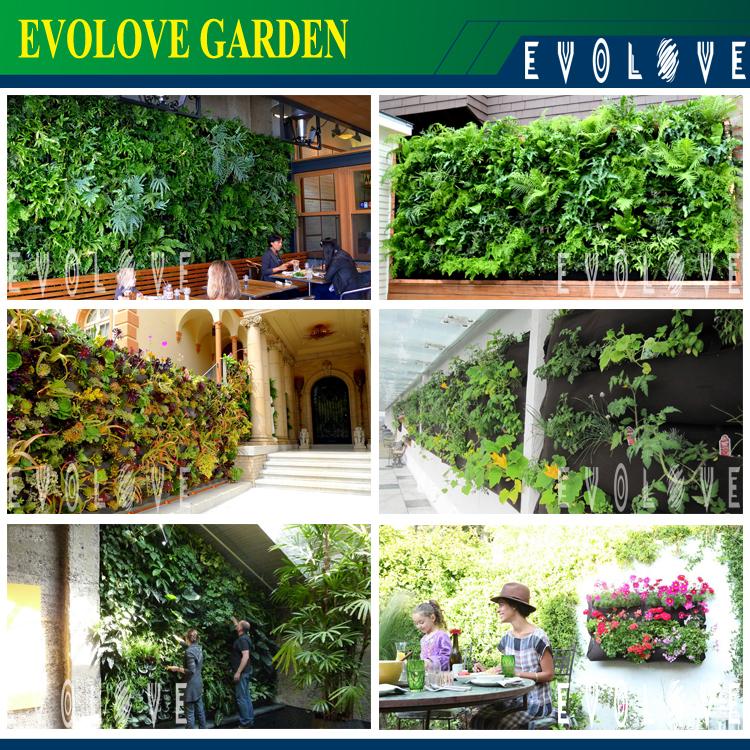 Vertical Garden Supplies Wholesale Buy Vertical Garden
