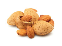 Raw almond nuts factory price for sale