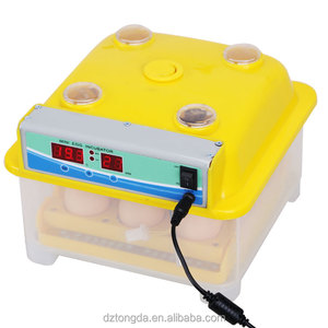 8 eggs incubator dual power egg incubator design and assembly