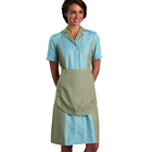 Anti-Static Zipper Down Fashionable Colors Dual Tone Hotel Uniform Ladies Housekeeping Maids Dress