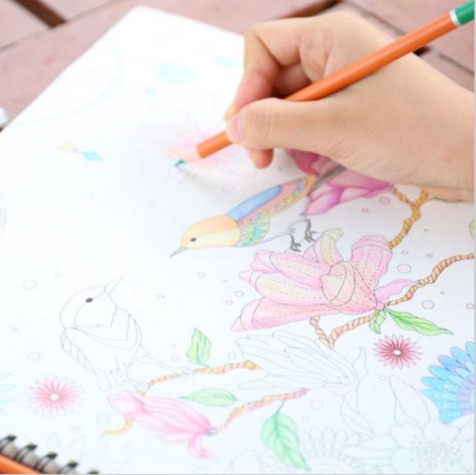 Diy Libro Para Colorear Un Inky Treasure Hunt Arte Graffiti Pintura ...