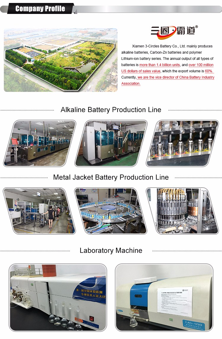 China Manufacturers Golden Power 1.5v Lr03 Dry Cell Alkaline Aaa ...