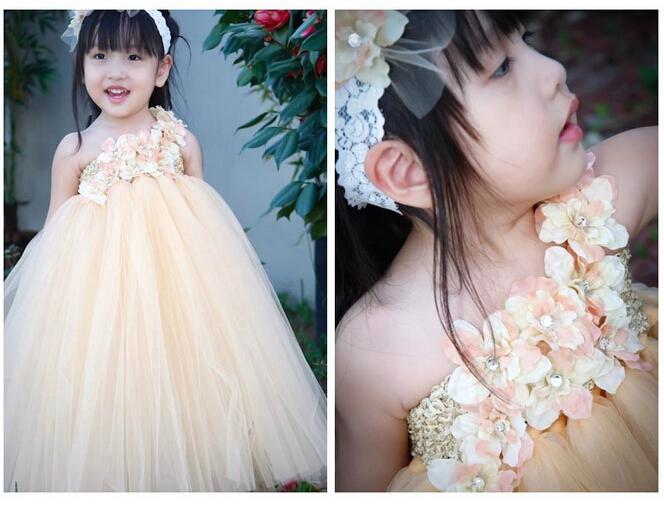Princess Ball Gown Wedding Dress: Luxury European Designer Big Children Tutu Lace Wedding
