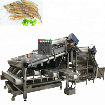 Factory shrimp processing line / Shrimp grading washing machine