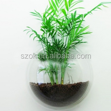 Artificial Unique Transparent Hot Sale Acrylic Wall Mount Fish ...