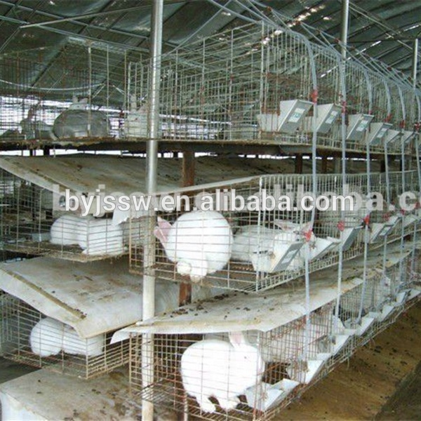 Cheap Rabbit Farming Cage, Industrial Cage,Commercial rabbit cage for rabbit in Kenya farm