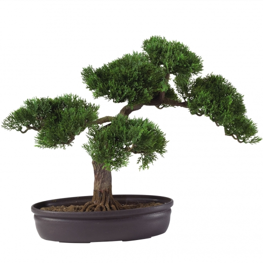 Indoor Gigante Podocarpus che fanno di Cedro Artificiale Bonsai, artificiale mini bonsai alberi di pino per la vendita