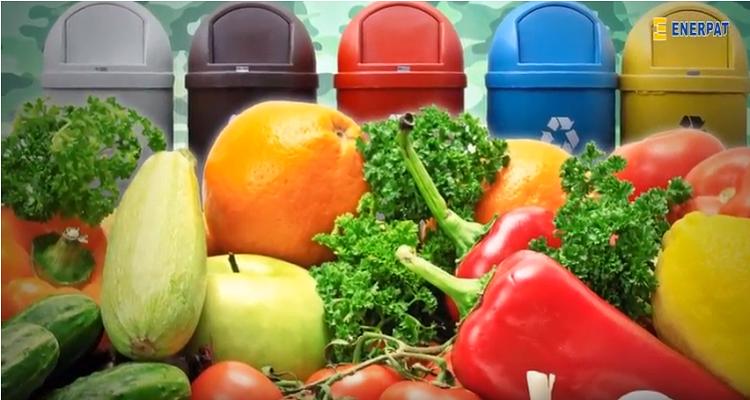 खाद्य अपशिष्ट चक्की/जैविक अपशिष्ट खाद के लिए औद्योगिक तकलीफ/औद्योगिक गत्ता तकलीफ