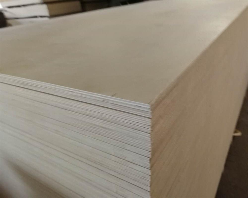 baltic birch plywood pro - 1000×800