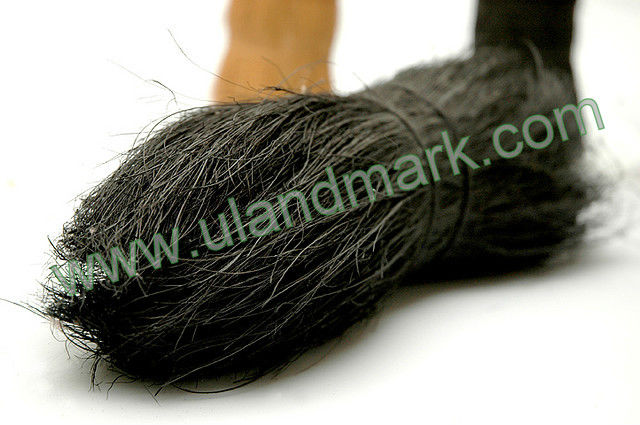 Black Dyed Bristle Fiber