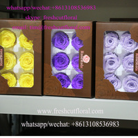 Eternal Preserved Flowers Rose Gift Available Year Round For Wholesale Florist