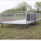 Professional Manufacturer stainless steel piglet nursery stall / pig nursery pen weaner pen