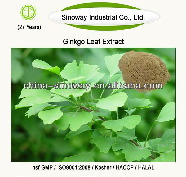 ginkgo biloba extract 24\/6% water soluble5%