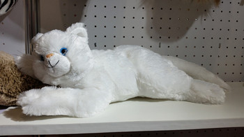 Fuzzy Sweet White Cat Plush Toys And Stuffed Cats Buy Cat Plush