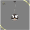 Modern Style Indoor Decorative Hanging Lighting Glass Lampshade Pendant Light, Chrome Ball Pendant Lamp