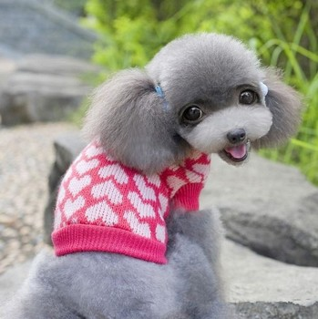 Fancy Knitting Pattern For Dog Coats Composition - Easy Scarf ...