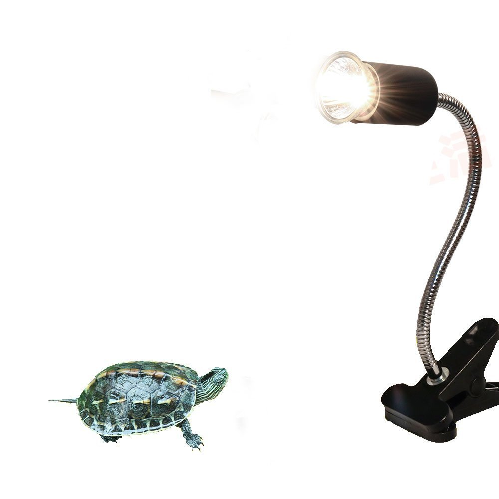 Cheap Uv Reptile Light, find Uv Reptile Light deals on line at ...