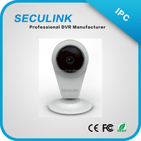 easy to install P2P ip camera with OEM software and hardware