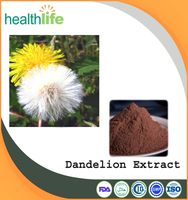 Nature factory supply pure Taraxacum Dandelion extract, Dandelion root powder with Flavonoids
