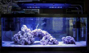 16'' Sunrise Sunset Led Aquarium Light For Nano Reef Tropical Fish ...