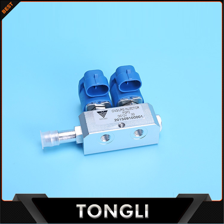 Hot Selling 2 Cylinder LPG/CNG Conversion Kits Injector Rails