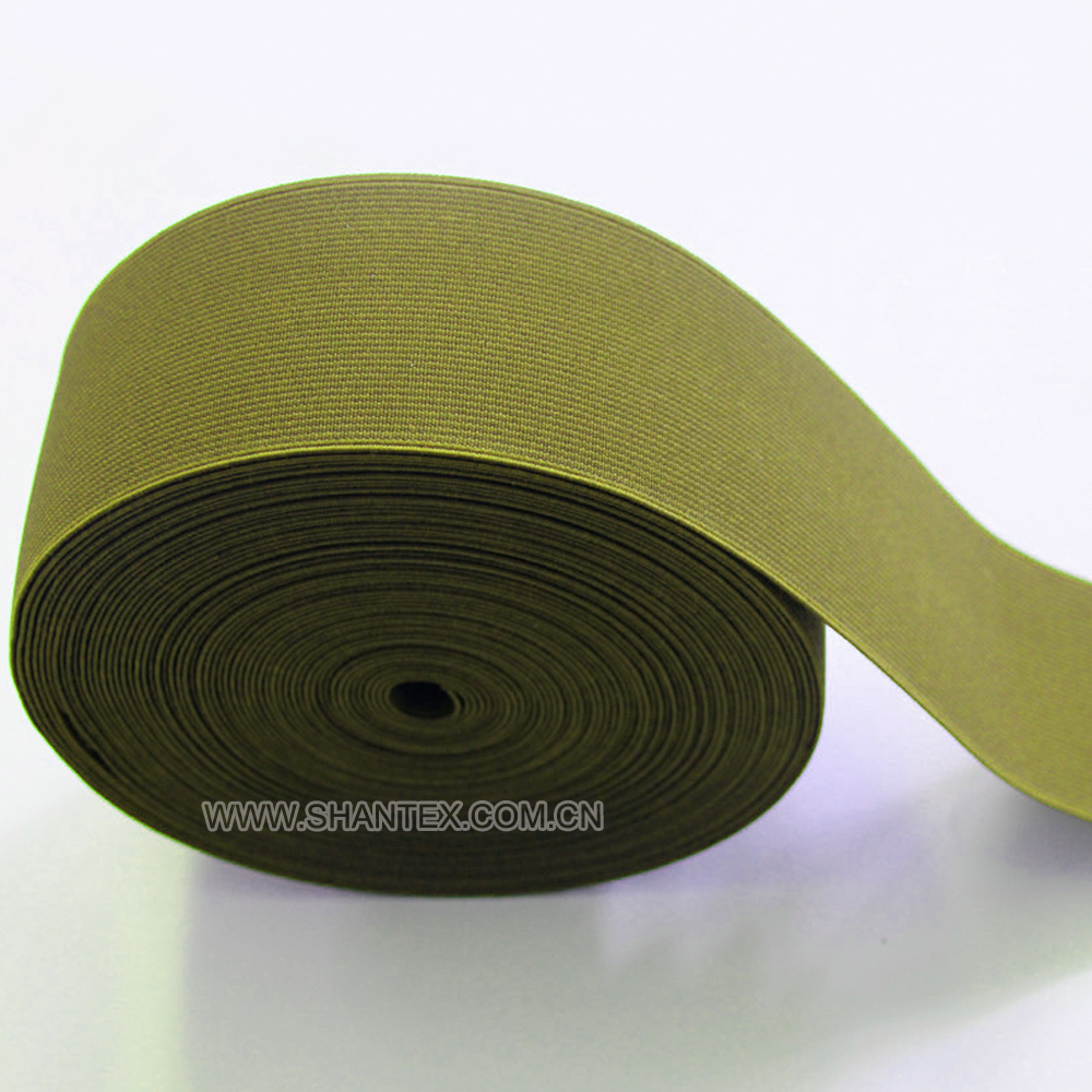 Elastic webbing tape for garment/underwear /shoe/bags/Home texitile