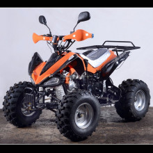 110cc Zhejiang ATV 110cc Peace Sports ATV