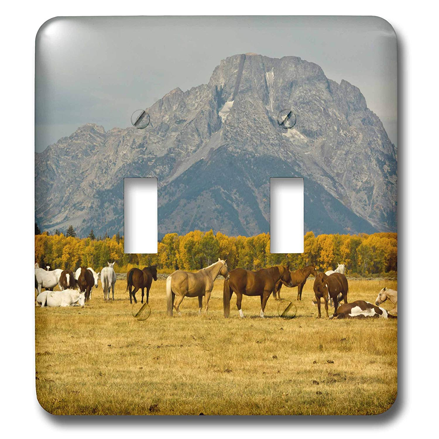 3dRose Danita Delimont - Horses - Horses, Elk Ranch Flats, Grand Tetons, Grand Teton NP, Wyoming, USA - Light Switch Covers - double toggle switch (lsp_279827_2)