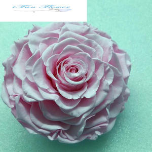 Singapore flower price names of lowers used for decoration 9-10 cm preserved rose