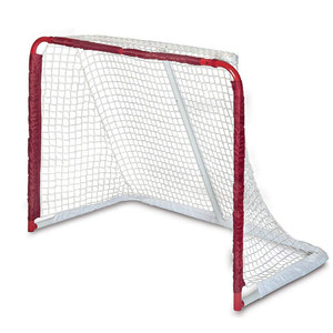 High Quality hockey net Ice Hockey and field hockey
