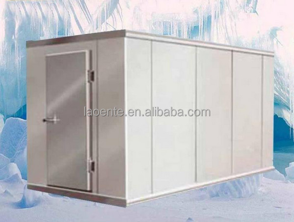 walkin cold room for fish and frozen food storage