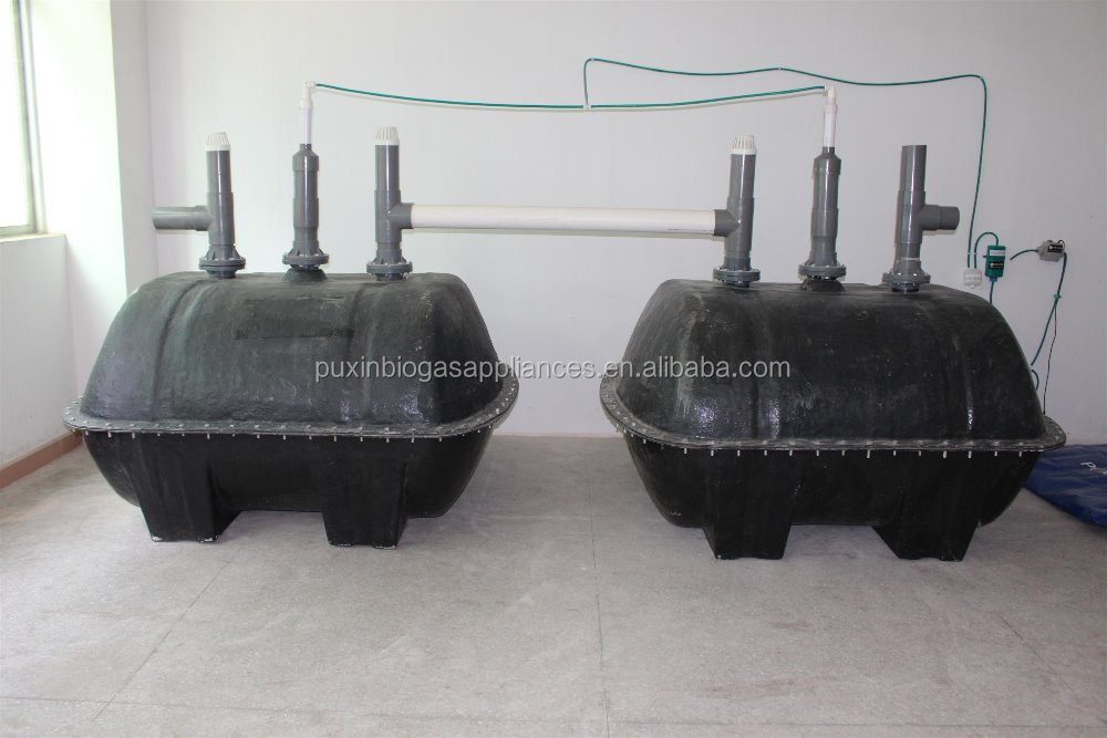 China Brand Puxin Small Home Wastewater Treatment Sewage Waste Disposal Biogas Plant