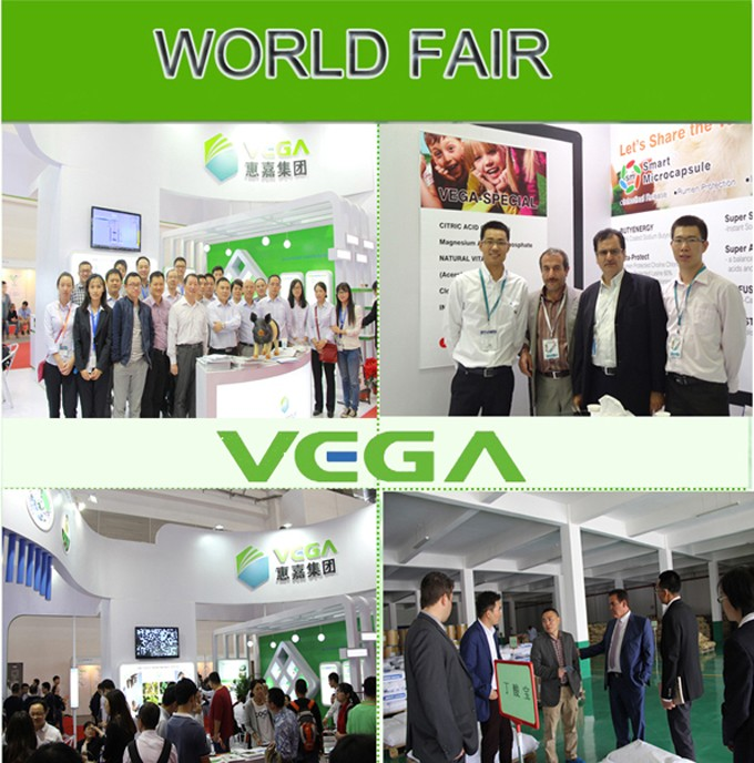 China Gmp Manufacturer Coated Urea,Feed Additives 80% Coated Urea ...