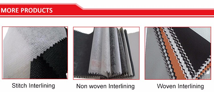 (6019W)100%Polyester Double Dot Nonwoven Fusible Interlining PES Micro Fabric