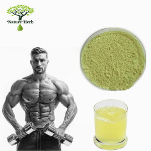 Bodybuilding supplements Instant Drink fruit BCAA Blending Powder flavor bcaa protein