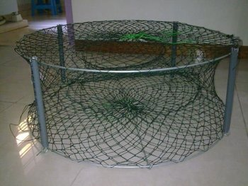 how to make a minnow trap out of chicken wire