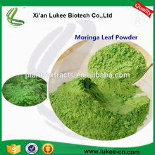China high quality moringa seeds buyers