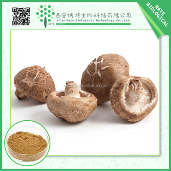 AMAZING OFFER mushroom extract ahcc bulk powder golden suppliers