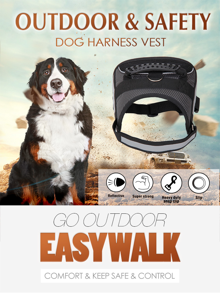 Competitive Hot Product Nylon Dog Harness Vest for Small Medium Dogs Walking