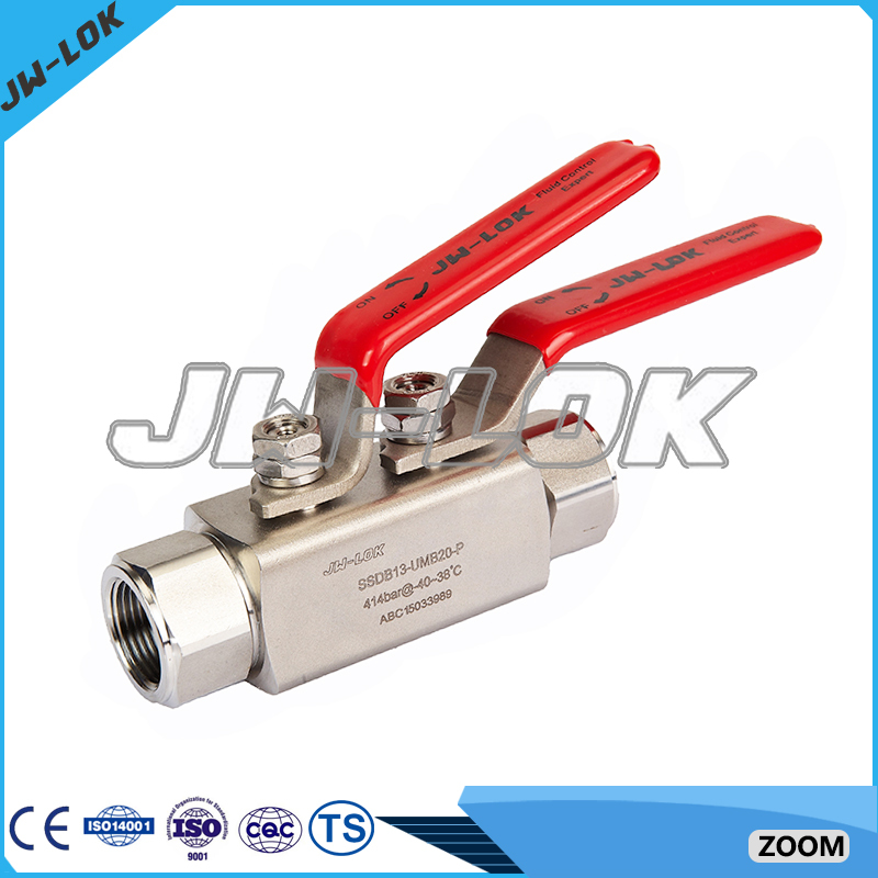 Stainless steel manual ball valve with 2 handle