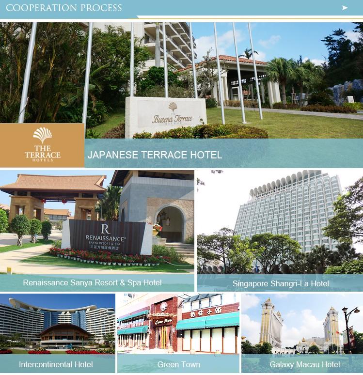 Galaxy Macau Hospitality Furniture Resin Wicker Outdoor Round Lounge Resort Sunbed Swimming Pool