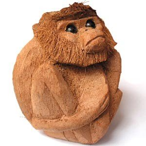 Geschnitzt Monkeyof Eine Kokosnuss Obst Weltweit Ausgeliefert Aus Sri Lanka Buy Geschnitzten Affenkokosnuss Früchte Carvingkokosnuss Früchte