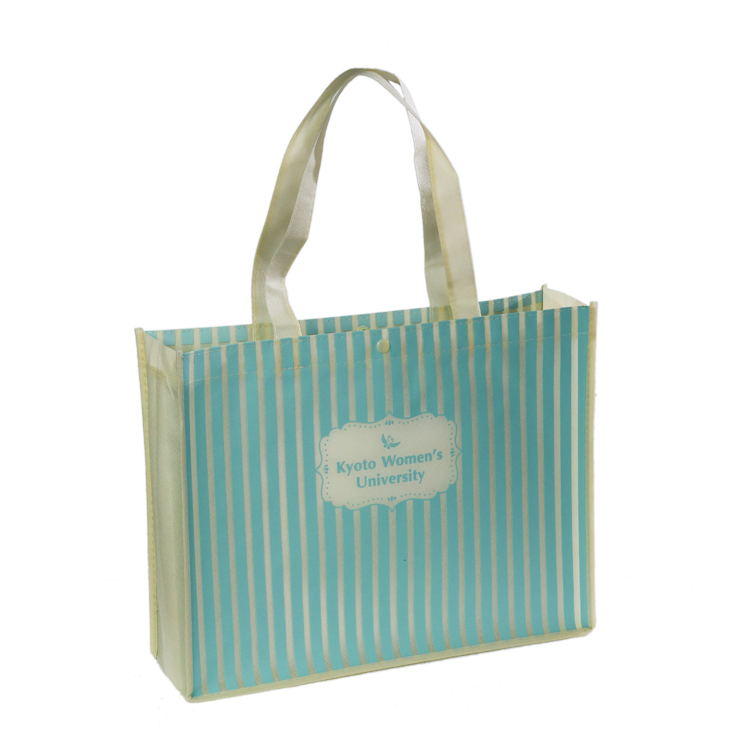 Design Printed 100gsm Non Woven Bag for <strong>Promotion</strong>