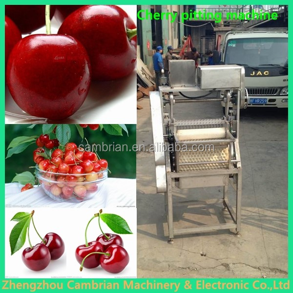 Cherry pitter stone removing machine with lowest price