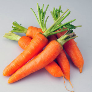fresh carrot vegetable specifications for sale