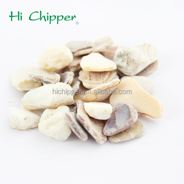 Best selling china leverancier crushed shell voor koop