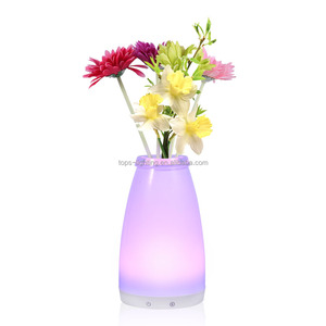 Decorative Flowers Vast Lamp Battery Operated Led Vast Touch Lamp