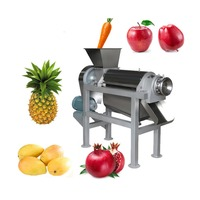 High Quality Commercial Fruit Juice Making Machine Industrial Cold Press Juicer Extractor Machine